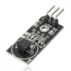 Digital Temperature Sensor - DS18B20