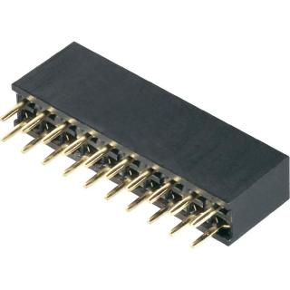 2x10 Pin (20-pinski) 2.54mm Header ženski - ravni